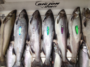 fishing-charters-Mackinaw-3